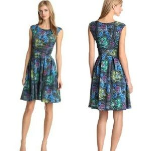 Anthropologie- Eva Franco Fit & Flare Dress Sz 4